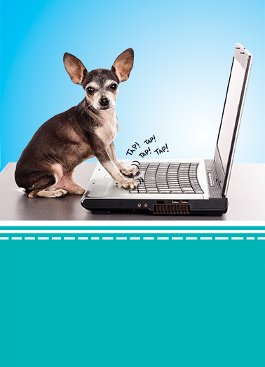 Funny Birthday Card Dog Typing From Cardfool